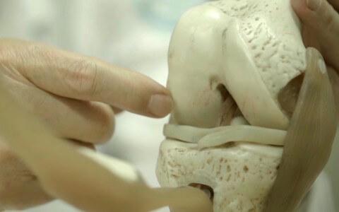 케이스템셀, 줄기세포로 세계 최초 '연골재생'